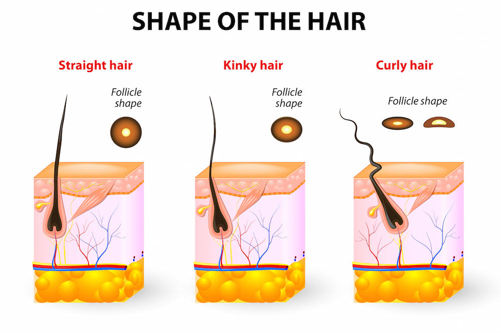 Take Better Care Of Your Scalp