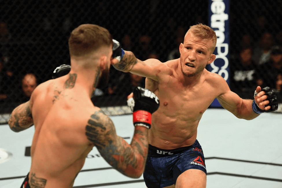 Dillashaw is a master of angles, a striker with a dynamic style