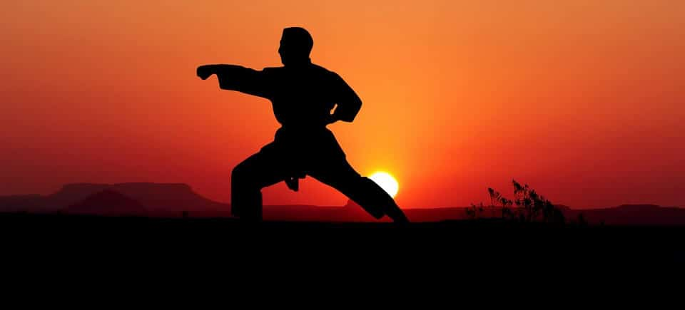 Martial artist practicing at sunset